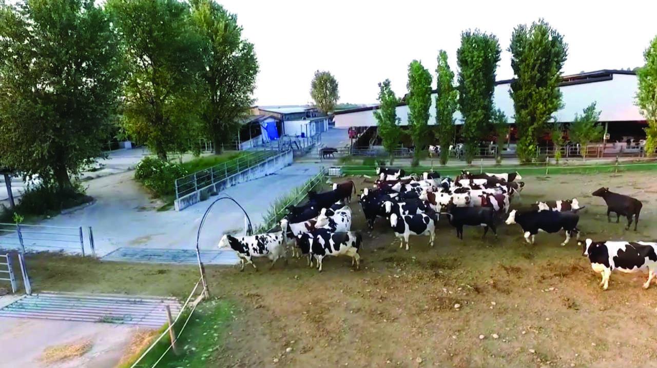 Granterre-Parmareggio